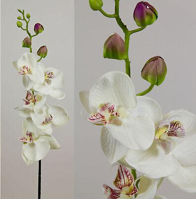 Orchideenzweig 90cm weiß-creme AD Kunstblumen künstliche Orchidee Blumen Pflanze