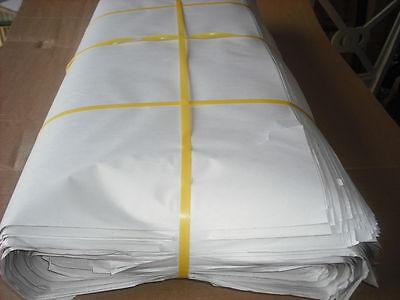 Newsprint blank 24 x36 Packing Paper Unprinted Sheets 25 lbs.