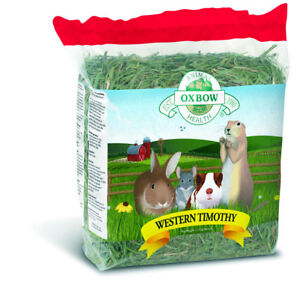 BIG-Timothy-Grass-Hay-Oxbow-Rabbit-Guinea-Pig-food