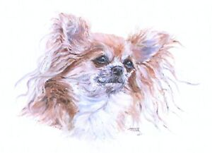Chihuahua Original Oil Sketch by Artist Susan Harper