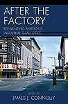 After the Factory: Reinventing America's Industrial Small Cities (Comparative Ur