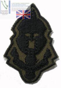 New Special Reconnaissance Regiment SRR Green Cap Badge