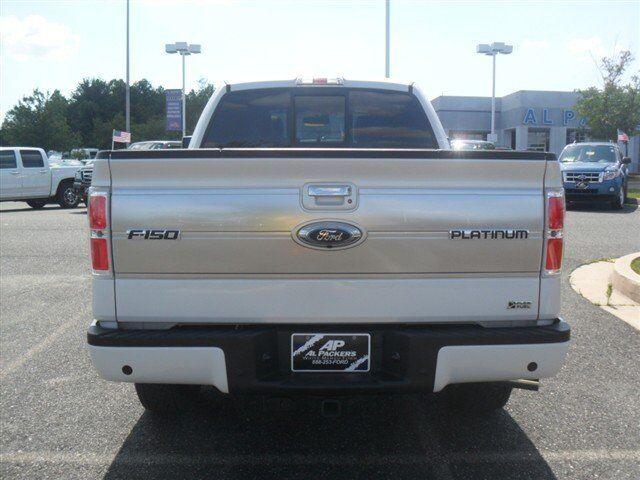 Image 1 of Platinum Ethanol - FFV…