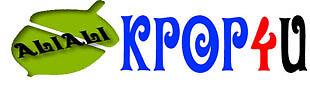kpop4u