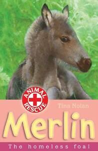 Merlin-The-Homeless-Foal-Animal-Rescue-Tina-Nolan-Good-Book