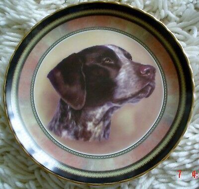Lovely Pointer 8 Inch Plate