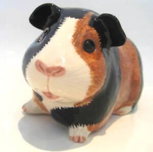 Quail Guinea Pig Piggy Bank  Money Box  Multi Coloured Gift Xmas Present
