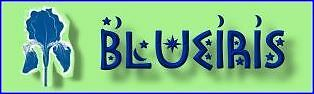 blueiris