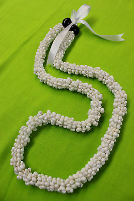NEW Hawaiian Wedding / Graduation Mini Shell Lei Hula Jewelry Necklace ~ WHITE