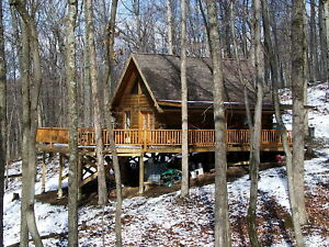 Log cabin kits construction ebay for Home construction packages