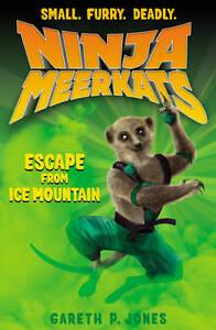 Gareth-P-Jones-The-Escape-from-Ice-Mountain-Ninja-Meerkats-3-Book