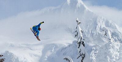 AK Snowboards