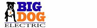 big_dog_electric48