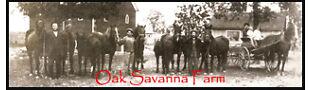 Oak Savanna Farm