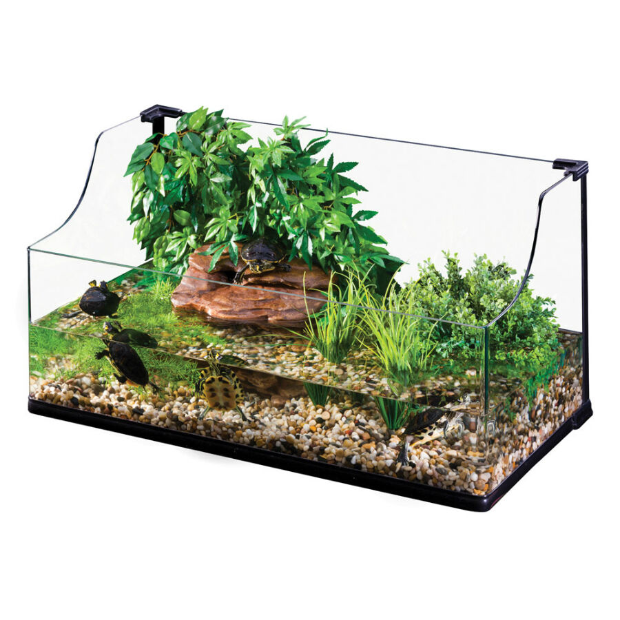 The Complete Guide to Buying Reptile Supplies