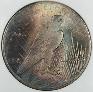 1925-Peace-Silver-Dollar-NGC-MS-65-Toned-DGH