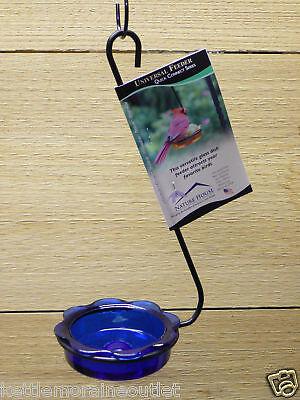 Erva Hanging Bluebird Mealworm Feeder Blue Dish Feeder