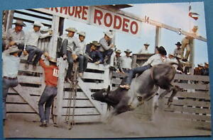 Photo-Postcard-Livermore-Rodeo-CA-Roberts-Murchison-50s