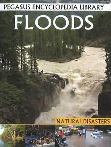 Floods, Pallabi B. Tomar