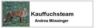 kauffuchsteam-online
