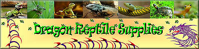Dragon Reptile Supplies