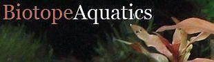 Biotope Aquatics