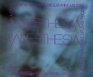 DEAN-WAREHAM-Anesthesia-ex-Galaxie-500-pre-Luna-single-Indie-Alternative-CD