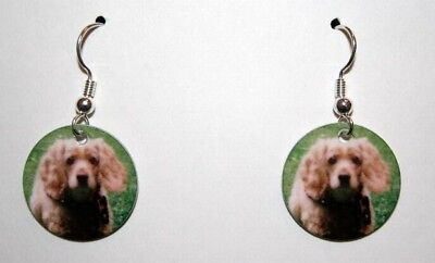 Personalized Photo Charm Earrings Any Photo, Pets, Children, Nice Gift