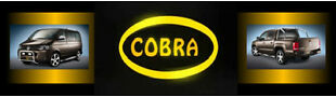 cobra-tuning-shop