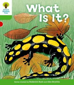 Oxford Reading Tree: Level 2: More Patterned Stories A: What Is It?, Hunt, Roder