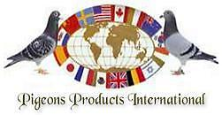 International Pigeons Products