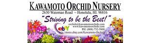 Kawamoto Orchids