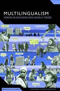 NEW Multilingualism: A Critical Perspective (Advances in Sociolinguistics)