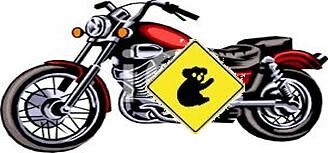Wrong Way Koala