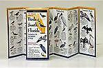 Birds-of-South-Florida-2003-Paperback