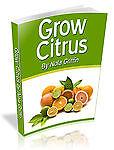 grow-citrus