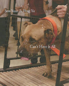 Sun-Yuan-and-Peng-Yu-Cant-Have-it-All-by-Leng-Lin-Paperback-2010