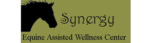 synergy_fundraising_store