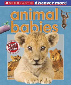 Animal Babies (Discover More), Gordon-Harris, Tory BOX052