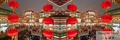 ShanghaiStory