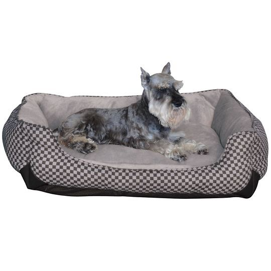 How to Buy Used Dog Beds