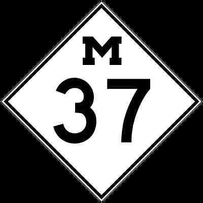 M37Auction