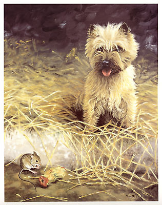 """CAIRN TERRIER DOG FINE ART LIMITED EDITION PRINT  - """"A Tasty Morsel""""  Mouse"""