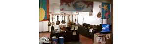 Sharkulele Ukuleles and more