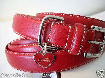 Coach Dog Collar Xs