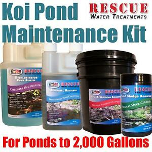Koi pond water treatment maintenance kit 2 000 gals ebay for Koi treatment