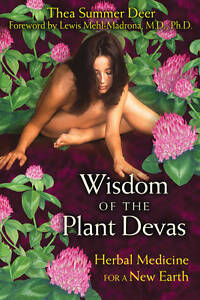 Wisdom of the Plant Devas: Herbal Medicine for a New Earth, Good Condition Book,