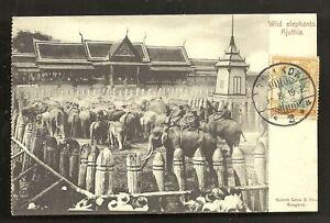 Ajuthia-Ayutthaya-Wild-Elephants-Siam-stamp-ca-1899