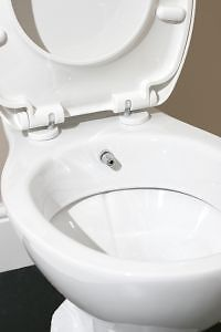 benefits of combined bidet toilet ebay. Black Bedroom Furniture Sets. Home Design Ideas