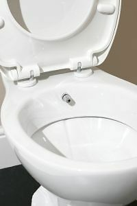 toilet bidet combination ebay. Black Bedroom Furniture Sets. Home Design Ideas